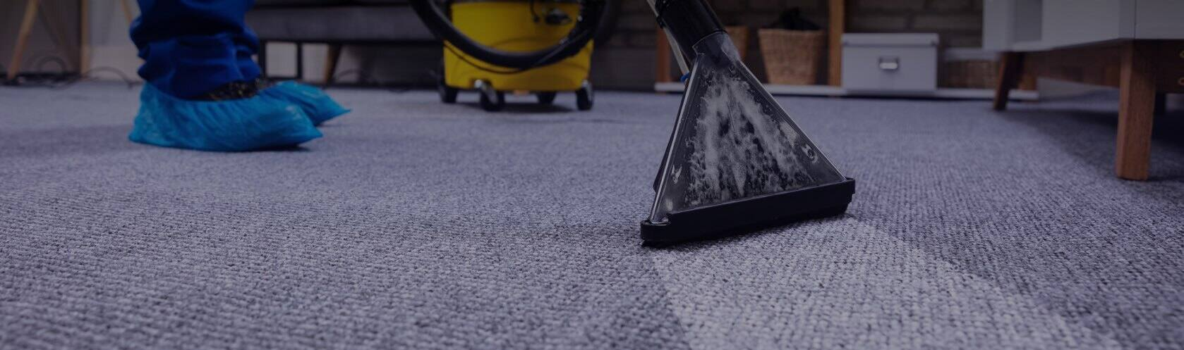 Top-rated carpet cleaners work.
